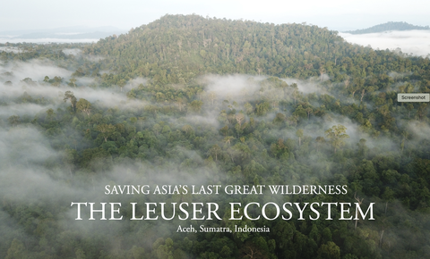 Global Conservation Publishes New Book on The Leuser Ecosystem