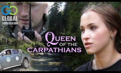 New Film: Queen of the Carpathians