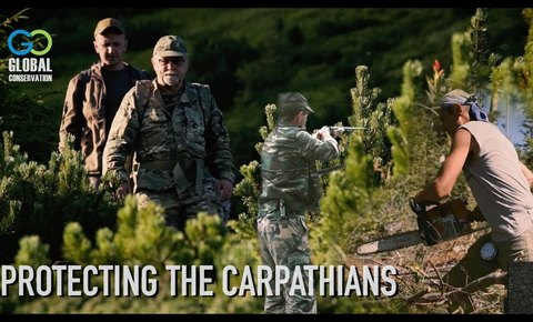 New Film: Protecting the Carpathians