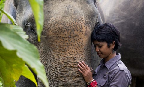 Leuser Ecosystem Conservationist Farwiza Farhan Wins Whitley Awards for Nature