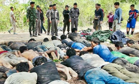 Part II: Thap Lan Frontline in Illegal Rosewood Logging War
