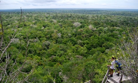 Guatemala Proposes Mirador National Park for UNESCO World Heritage at COP21 Paris