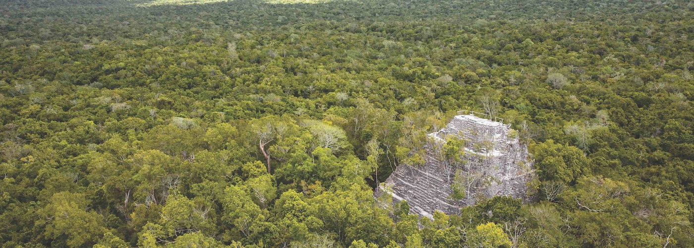 US Senators Redouble Support for the Conservation of the Mirador-Calakmul Basin